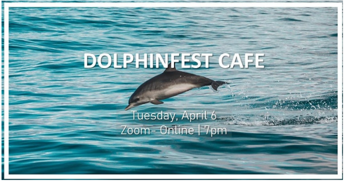 DOLPHINFEST CLIMATE CAFE